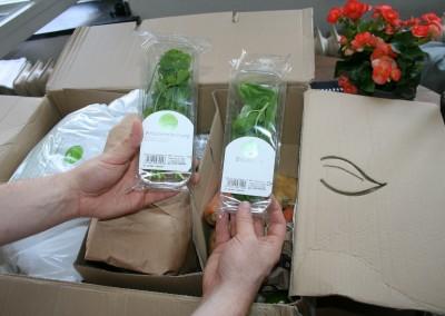 Kräuter  getrennt verpackt
